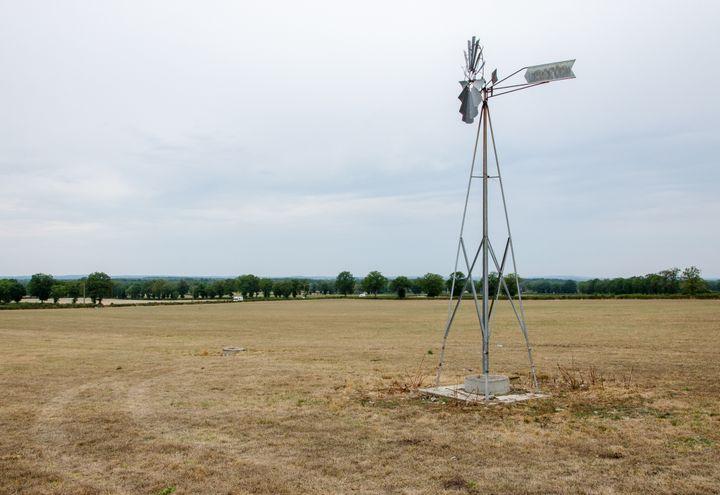 Une prairie brûlée par la sécheresse et la canicule, le 27 août 2019 à Lussat (Creuse). (THOMAS BAIETTO / FRANCEINFO)