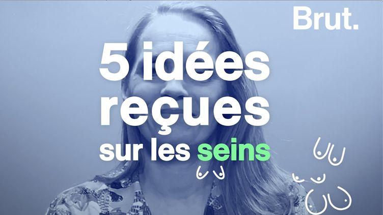 VIDEO. Cinq idées reçues sur les seins (BRUT)