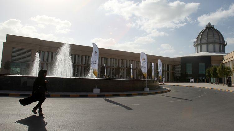 Le campus de l'université Paris-Sorbonne Abu Dhabi, ouverte en 2006 (KARIM SAHIB / AFP)