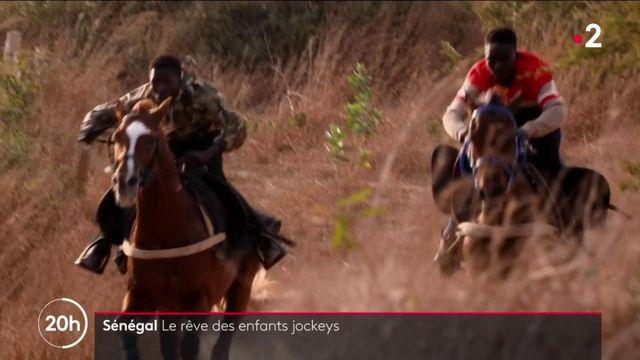 Sénégal : la passion des courses hippiques suscite des vocations chez les jeunes