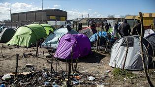 Un camp de migrants à Calais, en mars 2020. (SEBASTIEN COURDJI / EPA)