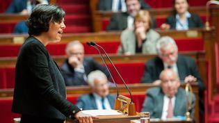 Myriam El Khomri, la ministre du Travail, le 3 mai 2016 à l'Assemblée nationale. (MAXPPP)