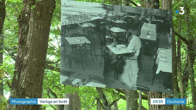 En Haute-Garonne, une expo photo en pleine forêt fait redécouvrir la ville de Porto