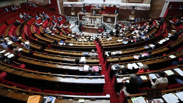 Vue de l'hémicycle, à Paris, le 16 juillet 2012. (PIERRE VERDY / AFP)