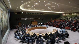 Réunion du Conseil de sécurité de l'ONU, à New York, le 14 mars 2018. (ATILGAN OZDIL / ANADOLU AGENCY)