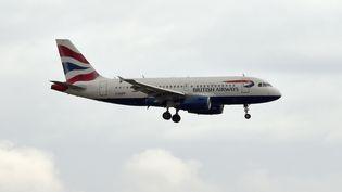 Un avion de la compagnie British Airways, le 29 septembre 2014. (PASCAL PAVANI / AFP)