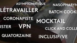 Le Petit Larousse 2022 (capture d'écran)