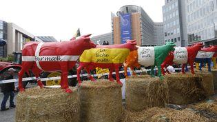 Des producteurs laitiers manifestent devant le siège du Conseil européen, à Bruxelles, le 7 septembre 2015. ( YVES HERMAN / REUTERS)