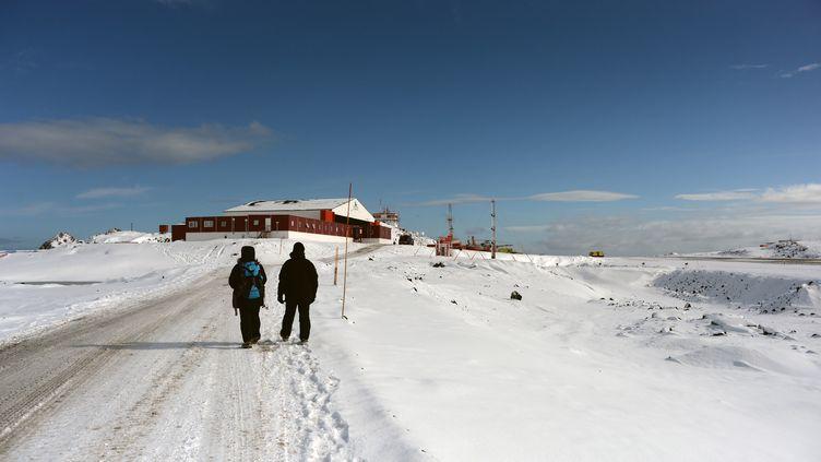La base militaire chilienne Presidente Eduardo Frei Montalva, que l'appareil devait ravitailler, se trouve en Antarctique. (VANDERLEI ALMEIDA / AFP)