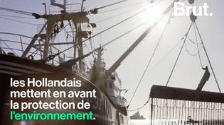 La pêche électrique, une pratique très controversée en Europe. (BRUT)