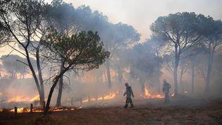 Despompiers luttent contre le feu à Gonfaron (Var), le 17 août 2021. (NICOLAS TUCAT / AFP)