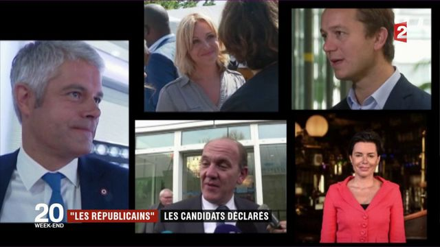 Les Républicains : qui sont les candidats déclarés à la présidence du parti ?