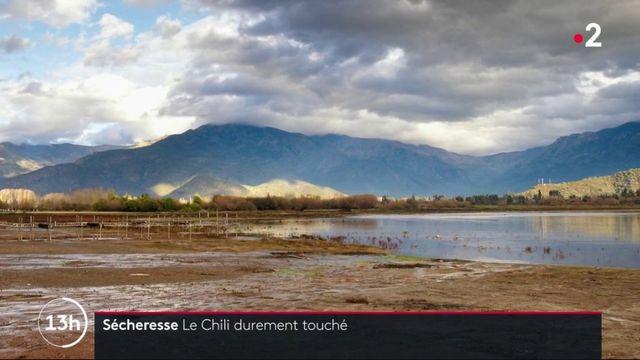 Sécheresse : le Chili durement touché