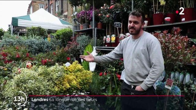 Londres : à la découverte de l'un des plus vieux marchés de fleurs