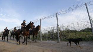 La police montée hongroise patrouille le long de la frontière avec la Serbie, à Roszke, le 14 septembre 2015. (LASZLO BALOGH / REUTERS)
