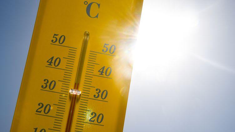 Plusieurs records de températures devraient être battus jeudi 25 juillet 2019. (DAMIEN MEYER / AFP)