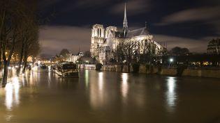 La Seine en crue à Paris, le 28 janvier 2018. (JOEL SAGET / AFP)