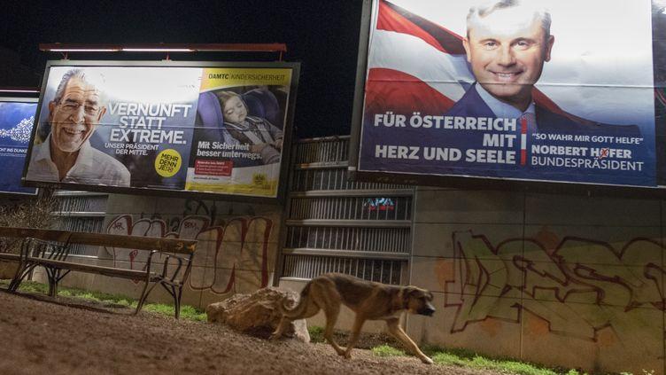 Des affiches électorales à Vienne (Autriche) en vue du second tour de l'élection présidentielle du 4 décembre 2016. (JOE KLAMAR / AFP)