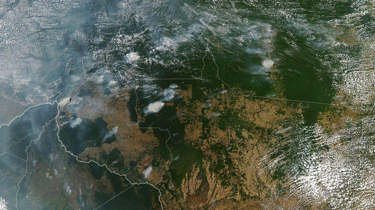 Des incendies en pleine forêt amazonienne au Brésil, vus depuis le ciel, le 11 août 2019. (HO / NASA EARTH OBSERVATORY / AFP)