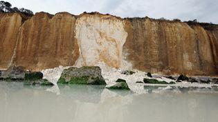 Un pan de la falaise s'est effondré à Varengeville-sur-Mer (Seine-Maritime), le 14 août 2015. (MAXPPP)