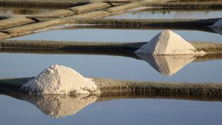 Des tas de sel attendent d'être ramassés à Guérande (Loire-Atlantique), le 18 octobre 2013. (MAXPPP)