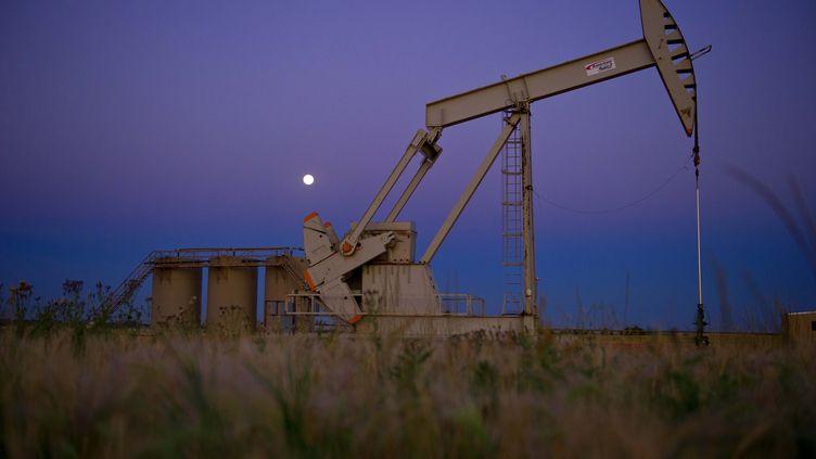 Puits de pétrole vers Tioga dans le Dakota du Nord, le 21 août 2013. (KAREN BLEIER / AFP)