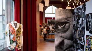 Rétrospective Maurice Renoma à l'Espace Bernard-Palissy de Boulogne-Billancourt.  (Martin BUREAU / AFP)
