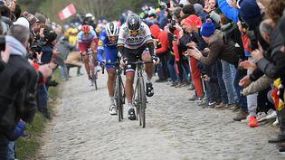 Le Slovaque Peter Sagan davant le Belge Philippe Gilbert lors de la 117e édition du Paris-Roubaix, le 14 avril 2019 (photo d'illustration). (STEPHANE MANTEY / POOL)