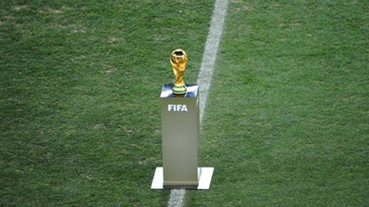 La Coupe du monde de football (CHRISTOPHE SIMON / AFP)