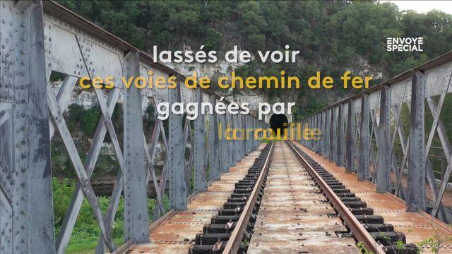 Transports : une coopérative ferroviaire veut relancer la ligne Bordeaux-Lyon