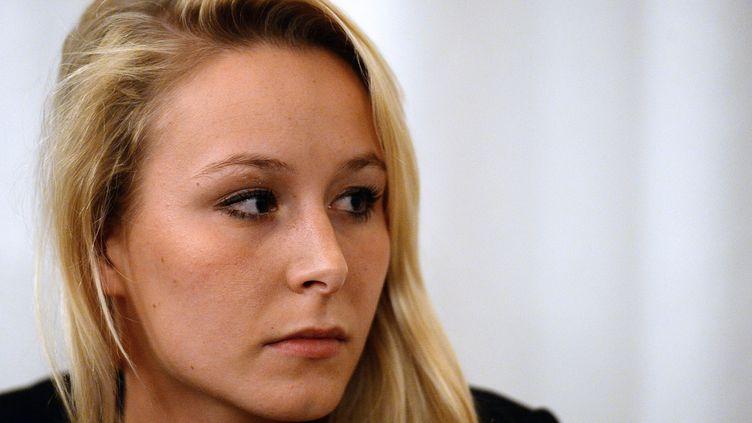 La députée FN Marion Maréchal-Le Pen, le 30 octobre 2013 à Sorgues (Vaucluse). (BORIS HORVAT / AFP)