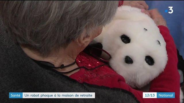 Santé : un robot phoque à la maison de retraite