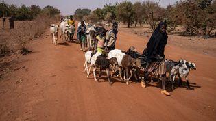 Des habitants quittent la petite ville de Barsalogho, au nord du Burkina Faso, le 27 janvier 2020. (OLYMPIA DE MAISMONT / AFP)