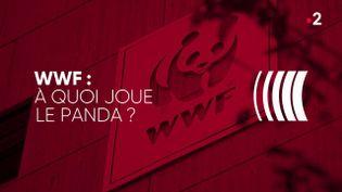 """""""Complément d'enquête"""". WWF : à quoi joue le panda ? (COMPLÉMENT D'ENQUÊTE/FRANCE 2)"""
