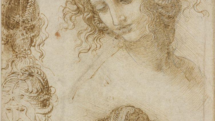 Léonard de Vinci, Études pour la tête de Léda (détail) (Royal Collection Trust / Her Majesty Queen Elizabeth II 2019)
