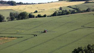 Un agriculteur épand un produit phytosanitaire dans son champ, en mai 2019, à Sainte-Mère (Gers). (SEBASTIEN LAPEYRERE / HANS LUCAS / AFP)
