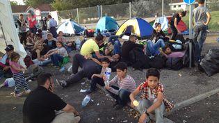 Des migrants assis le long de la frontière serbo-hongroise à Horgos, le 16 septembre 2015. (ELISE LAMBERT / FRANCETV INFO)