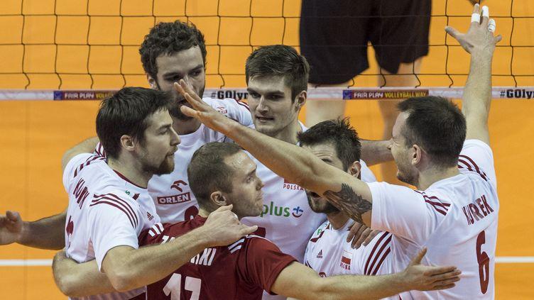 Les Polonais joueront leur place en finale du TQO face aux Bleus (JOHN MACDOUGALL / AFP)
