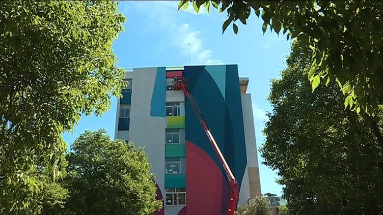 La fresque de Zest occupe une façade du CHU de Montpellier (C. Monteil / France Télévisions)