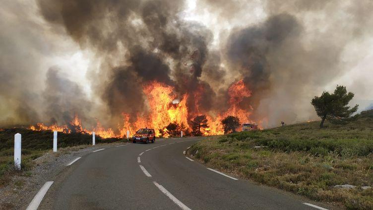 L'incendie a démarré samedi 3 juillet au matin dans le massif de la Clape. (PHILIPPE LEBLANC / MAXPPP)