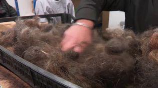 Une association à Brignoles (Var) récupère des cheveux coupés par les coiffeurs. Ils sont ensuite recyclés et aident à réduire la pollution des mers et des océans. (FRANCE 2)