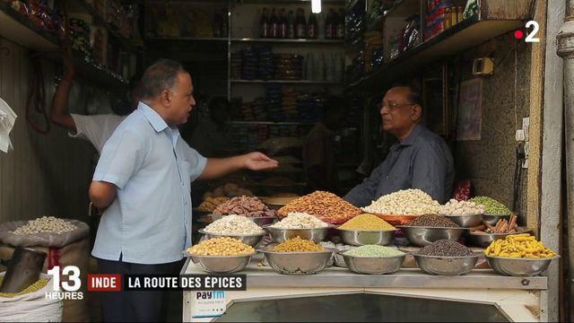 Feuilleton : Inde, la route des épices (1/5)