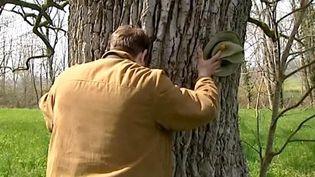 Jérôme Hutin, photographe et amoureux des arbres millénaires  (France 3 Culturebox)