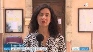 Noémie Dhan, à Signes (Var). (FRANCE 3)