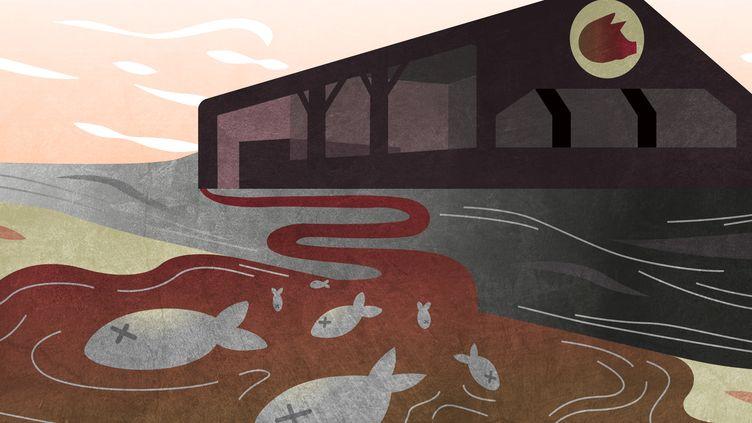 """En Bretagne, les accidents de fuite de lisier se multiplient depuis quelques années.Les pêcheurs et les associations environnementales dénoncentdes""""négligences"""" chez les éleveurs et un manque de contrôle des autorités. ((JESSICA KOMGUEN / FRANCEINFO))"""