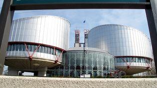 Le bâtiment de la Cour européenne des droits de l'homme à Strasbourg, conçu par l'architecte italien naturalisé britannique Richard Rogers (JEAN MARC LOOS / MAXPPP)