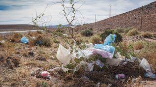 Des sacs en plastique dans la région de Taroudant,au Maroc. (FRANK RUMPENHORST / DPA)