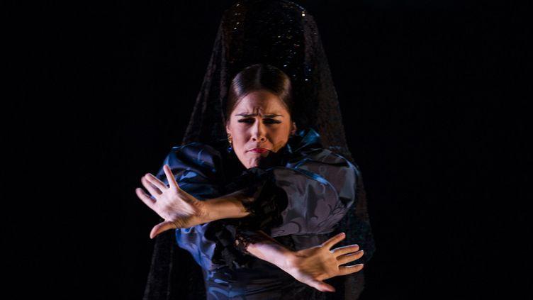 La danseuse espagnolePatricia Guerrero sur scène à Seville le 30 septembre 2016  (Cristina Quicler / AFP)