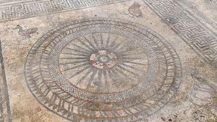La mosaïque découverte à Uzès en 2017.  (PASCAL GUYOT / AFP)