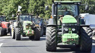 Une route bloquée par des agriculteurs près de Montaigu (Vendée), le 22 juillet 2015. (GEORGES GOBET / AFP)